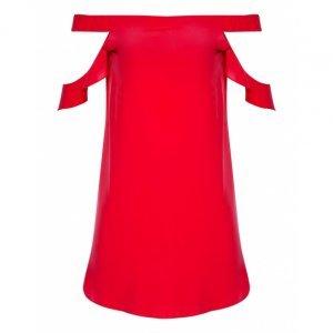 Silk Shoulder Neckline Dress