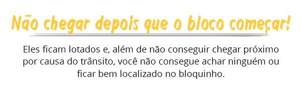dica - carnaval - blocos - rua - brasil