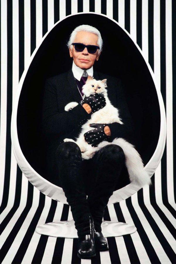 Karl Lagerfeld - pet  - choupette - livro - paris