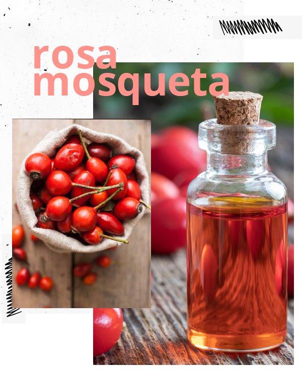 rosa mosqueta - óleo essencial rosa mosqueta - óleo essencial - cuidados com a pele - beleza