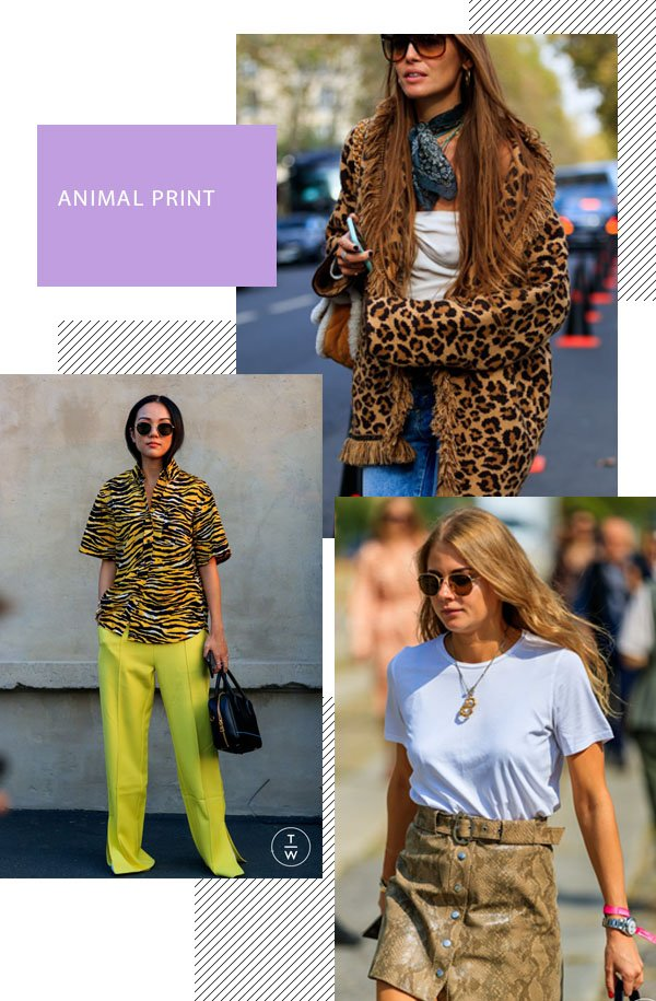 It girls - Animal print - Animal print - Inverno - Street Style