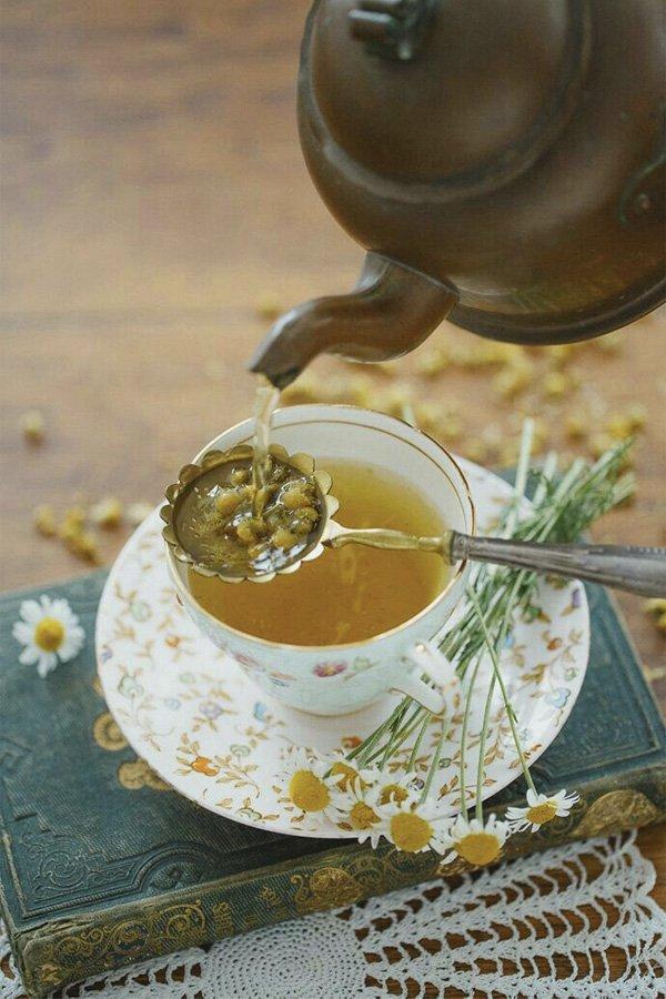 reprodução pinterest - tipos de chá - benefícios do chá - inverno - street style