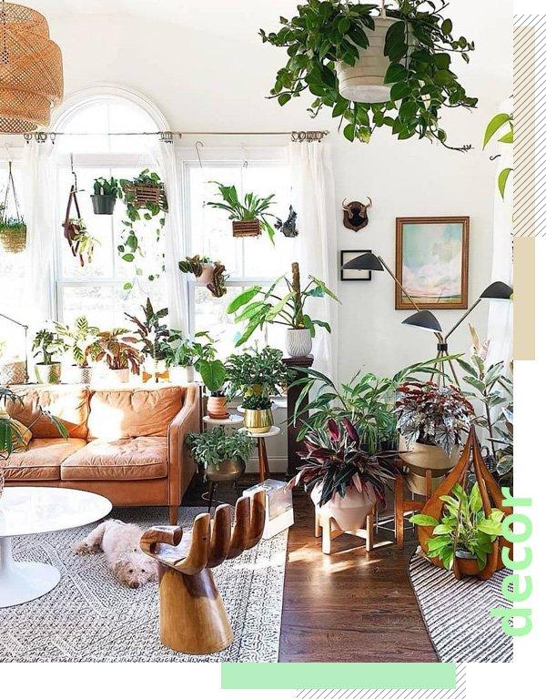 Urban Jungle Bloggers - feeds que inspiram - decor - inverno - street style