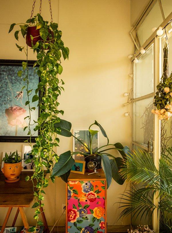 It girls - Plantas - Em casa - Outono - Em casa - https://stealthelook.com.br