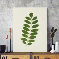 Pôster A5 - Acácia Leaf