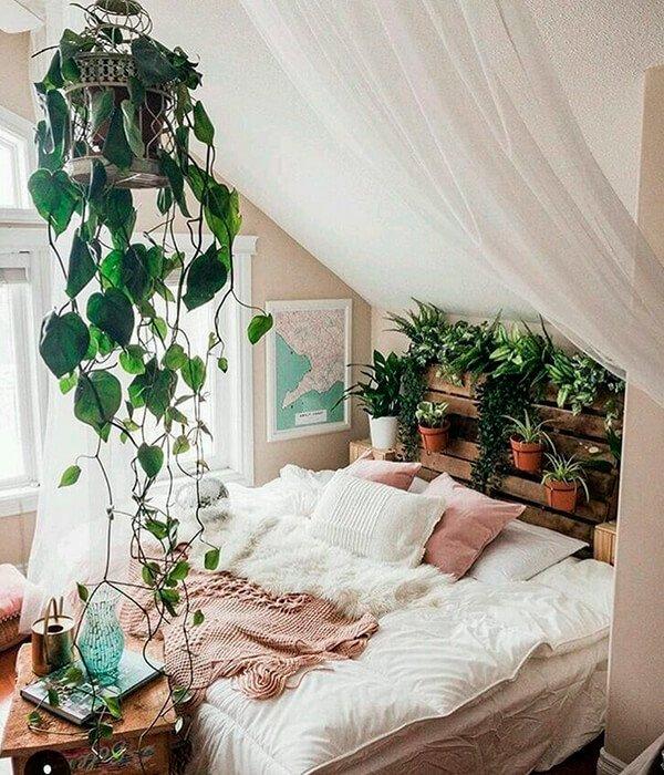 Plantas perfeitas para ter no quarto - Plantas perfeitas para ter no quarto - Plantas perfeitas para ter no quarto - Plantas perfeitas para ter no quarto - Plantas perfeitas para ter no quarto - https://stealthelook.com.br