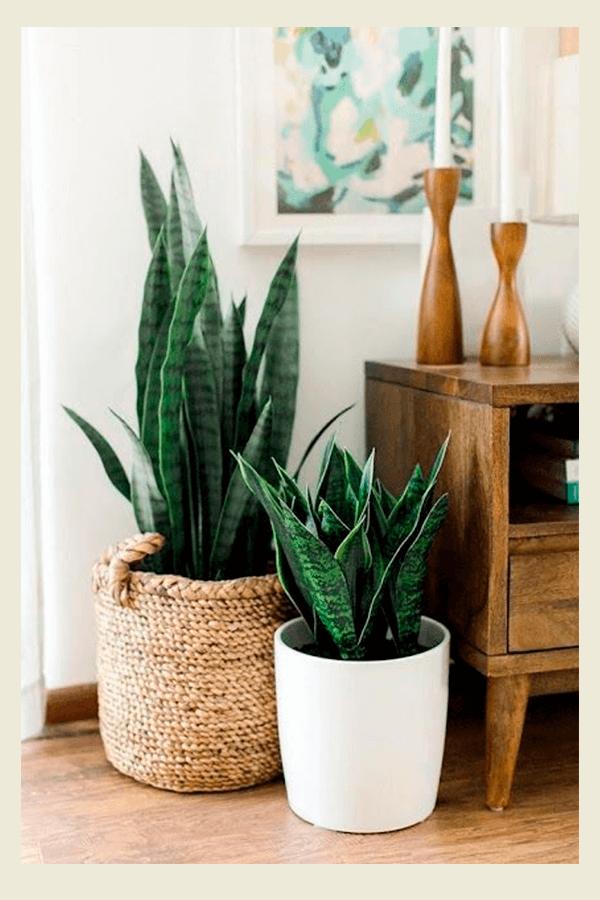 Pinterest - cesto de palha - palha - verão - Em casa - https://stealthelook.com.br