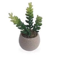 Suculenta Arranjo Flor Artificial Com Vaso Bege Em Cerâmica Estilo Kokedama - Flordecorar