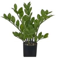 Planta Árvore Artificial Zamioculca Real Toque Verde 40cm - Florescer Decor