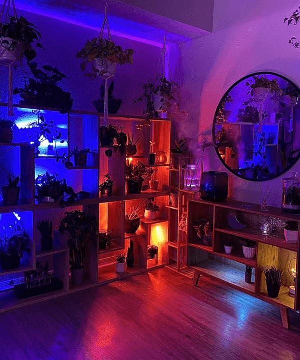 decoração de sala - decoração da sala - quarto neon - outono - brasil - https://stealthelook.com.br