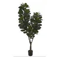 Planta Artificial A. Ficus Lyrata Real Toque x121 (2,1 m) - Florescer Decor