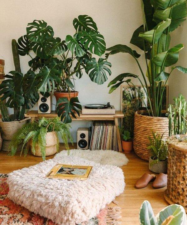 plantas em casa - plantas - Hábitos sustentáveis - inverno - brasil - https://stealthelook.com.br