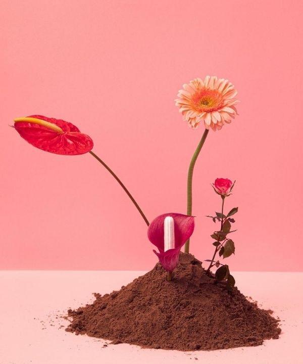 Pantys  - absorventes  - período menstrual  - produto orgânico  - menstruação - https://stealthelook.com.br