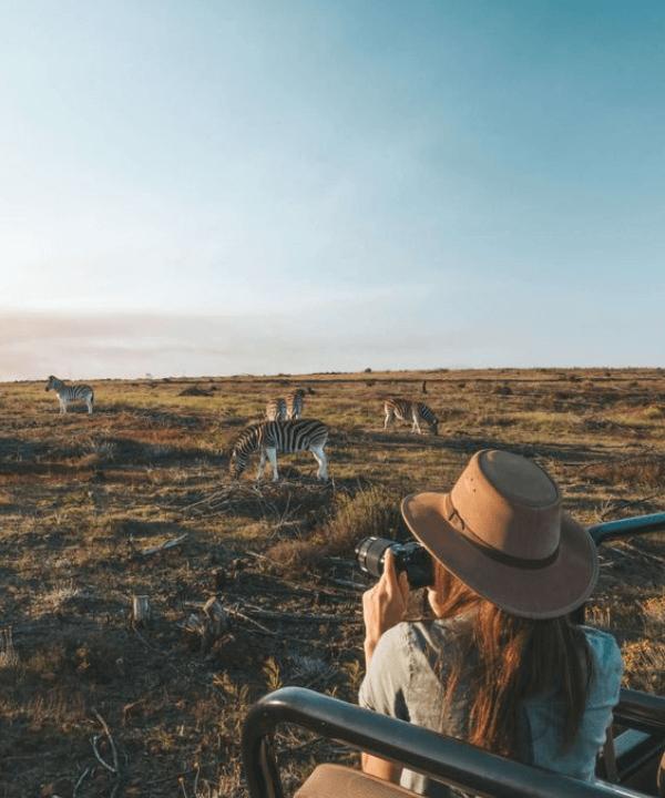 África do Sul - Viagem - viagem dos sonhos - Verão - África do Sul - https://stealthelook.com.br